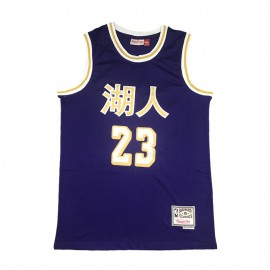 Camiseta LeBron James #23 Los Angeles Lakers 19/20 Púrpura Chinese Edition