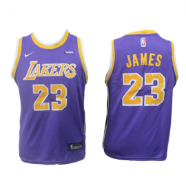 Camiseta LeBron James #23 Los Angeles Lakers 2019 Purpura Niño