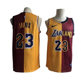 Camiseta LeBron James #23 Los Angeles Lakers Fan Edition
